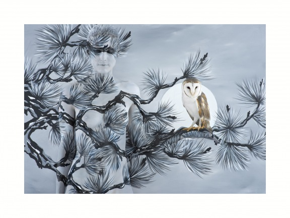 Oriental Fir with Owl